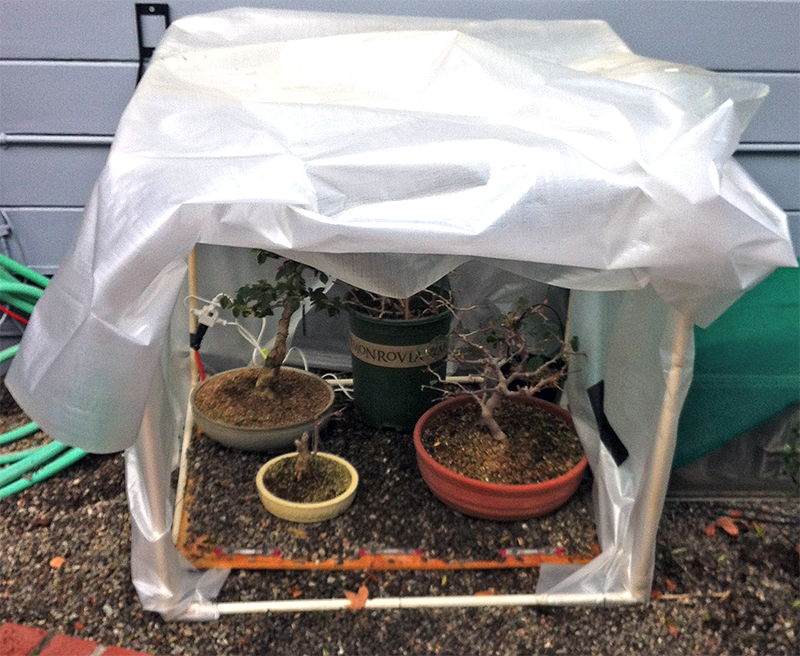 Finished Greenhouse