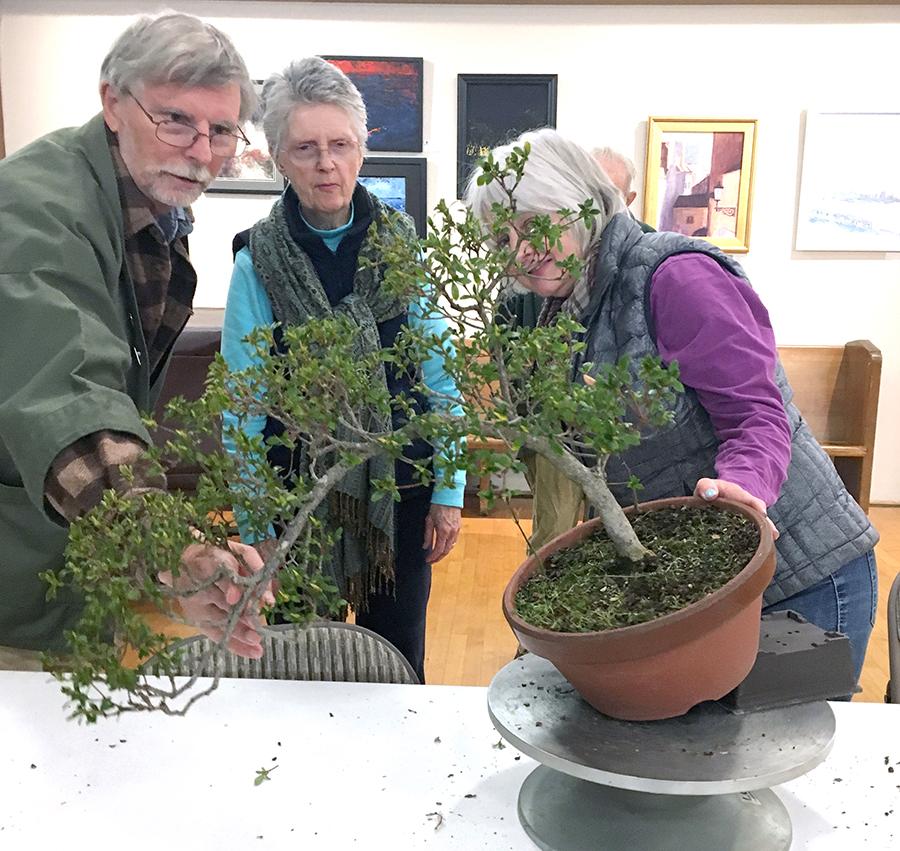 Richard and Barbara discuss Charlene's tree