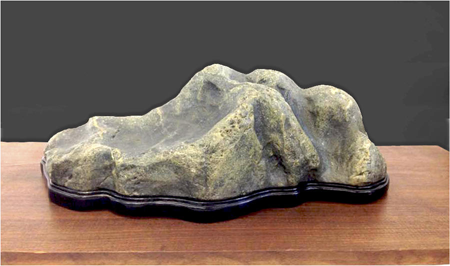 Stone collected by Ted Kameda, past club president of Kashu Suiseki Kai